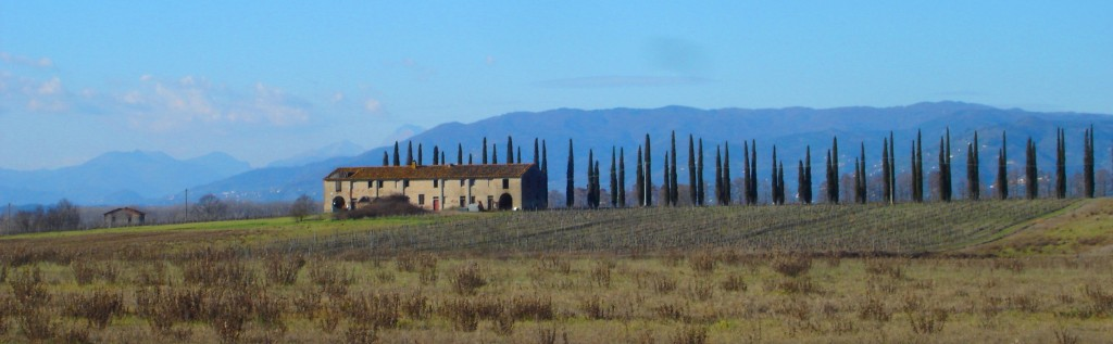 Winter in The Padule near Vellano & Lucca Tuscany Italy - www.tuscanyholidays-casaverde.com