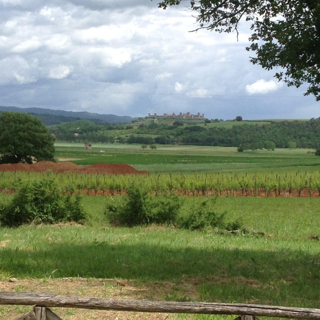 The road to Monteriggioni