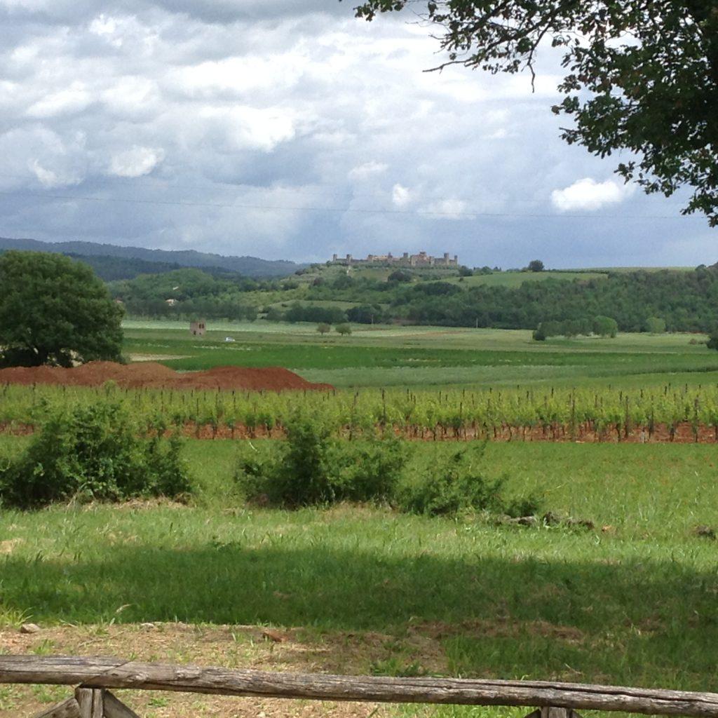 The road to Monteriggioni